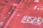 Grandeco EW 3203 - фото фактуры